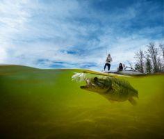 UnderwaterFish_DSC09382_rt1_150dpi